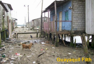 Guayaquil Filth